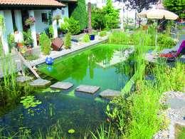 Bio Göl Havuz (Biyolojik Gölet ve Havuz Yapısalları)의  수영장