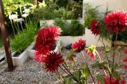 Jardines de estilo mediterraneo por Jardines Pati Duque