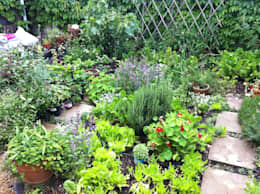 Jardines de estilo rural por Red Daffodil