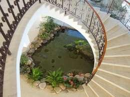 Jardines de estilo topical por Agua Viva Lagos e Paisagismo