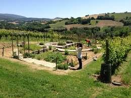 modern Garden by A3PAESAGGIO