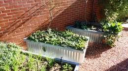Projekty,  Ogród zaprojektowane przez Gorgeous Gardens