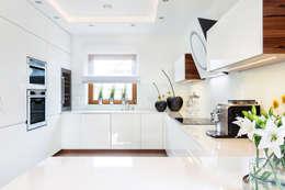 Spectacular Minimalist Kitchen Design. Modern Kitchen By Art House Studio