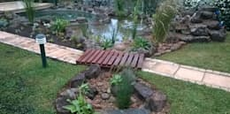 POOL TO POND CONVERSION:   by Paul's Plantscapes