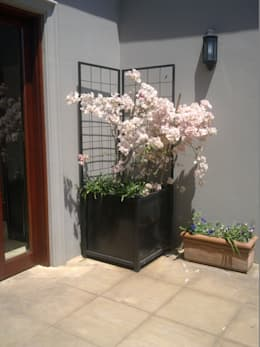 STEEL PLANTER:  Garden  by Oxford Trellis