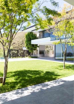 Сады в . Автор – Jenny Mills Architects