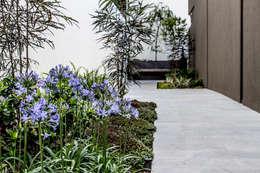 modern Garden by 2M Arquitectura