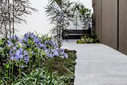 San Angel: Jardines de estilo moderno por 2M Arquitectura