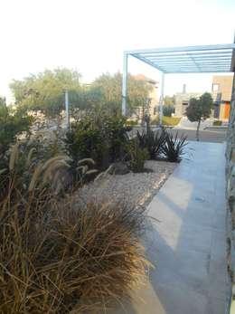 CASA DALVIAN LOS PUQUIOS: Jardines de estilo moderno por MABEL ABASOLO ARQUITECTURA