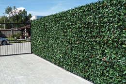 Muros Verdes Exteriores: Oficinas y tiendas de estilo  por Ranka Follaje Sintético