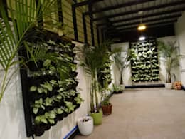 Indoor Landscape: modern Garden by Hasta architects