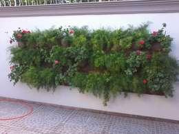 Jardin de style de style Moderne par Borges Arquitetura & Paisagismo