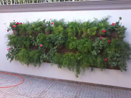 Jardín de estilo  por Borges Arquitetura & Paisagismo