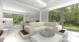 Projekt domu HoemKONCEPT 12: styl , w kategorii Salon zaprojektowany przez HomeKONCEPT | Projekty Domów Nowoczesnych
