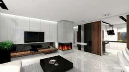 modern Living room by HomeKONCEPT | Projekty Domów Nowoczesnych