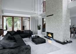 Projekt domu HomeKONCEPT-13- wnętrze: styl , w kategorii Salon zaprojektowany przez HomeKONCEPT | Projekty Domów Nowoczesnych