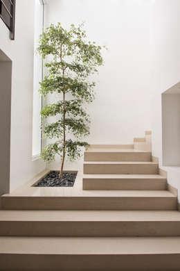 Pasillos, vestíbulos y escaleras de estilo  por IX2 arquitectura