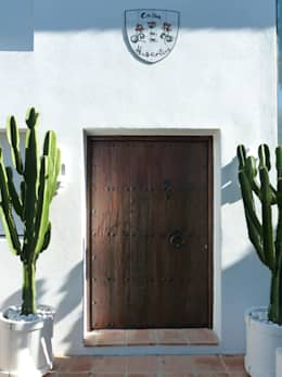 Wooden doors by Conely