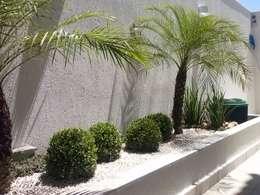 Giardino in stile in stile Tropicale di Mateus Motta Paisagismo