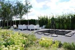 modern Garden by MUGO OGRODY