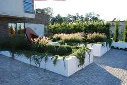 Сады в . Автор – MUGO OGRODY