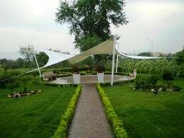 mediterranean Garden by Fervistudio Outdoor