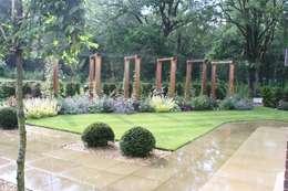 Jardines de estilo moderno por Dawn Garden Design