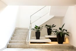Corridor & hallway by Cecília Mesquita Arquitetura