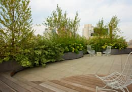Empire State Loft, Koko Architecture + Design:  Patios & Decks by Koko Architecture + Design