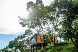 modern Houses by FAMWOOD 自然紅屋