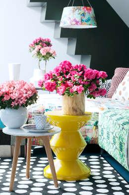 modern Living room by Pflanzenfreude.de