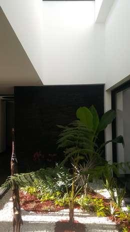 Jardin interior : Jardines de estilo moderno por Camilo Pulido Arquitectos