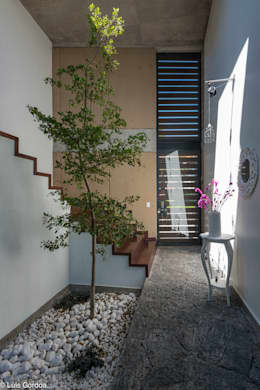 Arbol interior el corazón de la casa: Pasillos y recibidores de estilo  por arquitecturalternativa