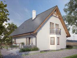 moderne Huizen door Biuro Projektów MTM Styl - domywstylu.pl