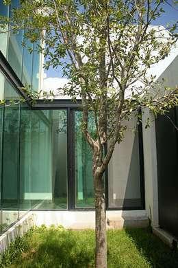Jardín interior: Jardines de estilo industrial por Narda Davila arquitectura