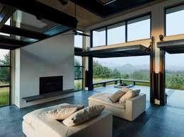 Livings de estilo moderno por Feldman Architecture