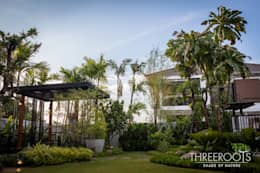 สวนบ้านคุณหนุ่ม:   by Threeroots Group Co.,Ltd.