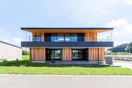 Casas de estilo moderno por STaD(株式会社鈴木貴博建築設計事務所)