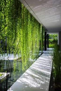 Interior landscaping by deco paysage concept Marbella