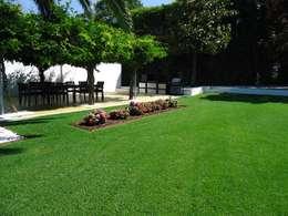 Jardim - Guimarães: Jardins modernos por TERRA JARDIM