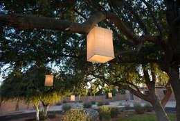 : Jardines de estilo moderno por TAMEN arquitectura