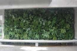 tropischer Garten von EKOA Paisagismo