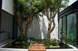 modern Garden by Vau Studio