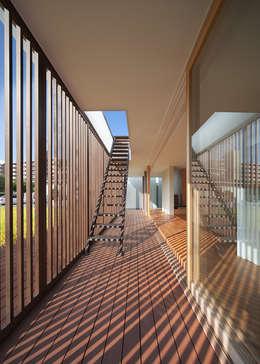 那珂川の家: 森裕建築設計事務所 / Mori Architect Officeが手掛けたベランダです。