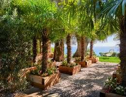 Сады в . Автор – SOLER-MORATO ARQUITECTES SLP