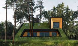minimalistic Houses by Snegiri Architects