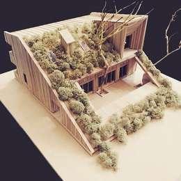 by Snegiri Architects