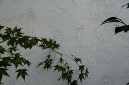 シラス土外壁の表情: 環アソシエイツ・高岸設計室が手掛けた壁&床です。