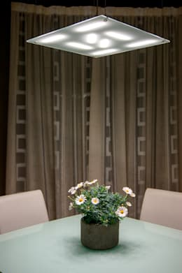modern Dining room by Luxelt