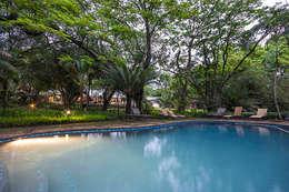 White River Manor: country Pool by Principia Design